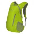 Salewa 義大利 11311 CHIP 18L 輕量休閒背包/攻頂包 (灰、綠、藍)