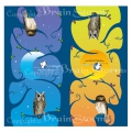 BrainStrom 領角鴞鵂鶹頭巾 K-015